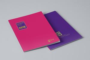 电子科技画册配色吸引人